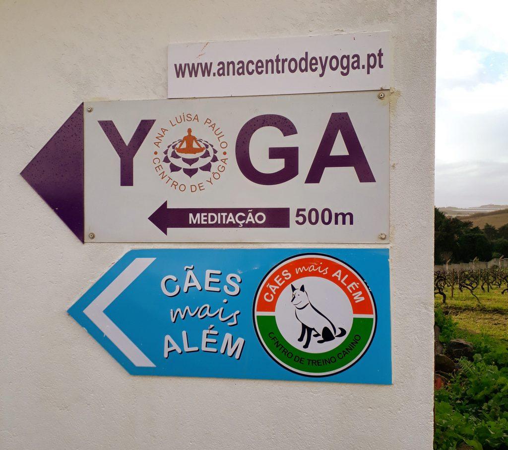 Local - Ana Luísa Paulo - Centro de Yôga